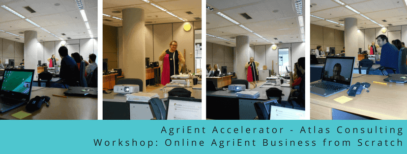 agrient-atlas-consulting-workshop-online-business-from-scratch